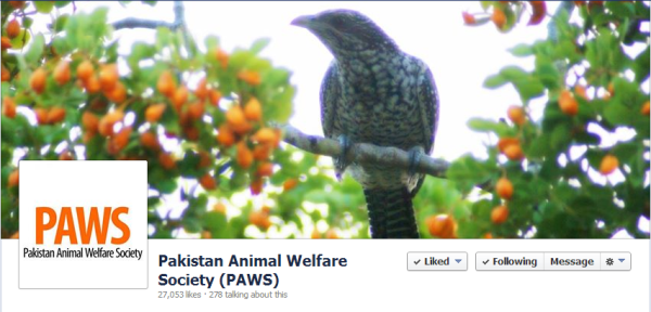 Pakistan Animal Welfare Society (PAWS)